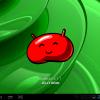 screenshot_2013-03-23-23-21-24